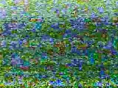peepshow loops 10210 19s and 100s - scene 2