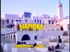 harem - part 6