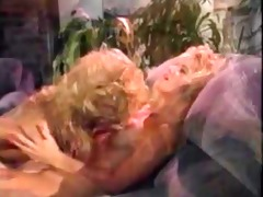 nina hartley receives into eating twat (vintage)